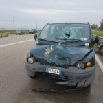Foggia – român decedat în urma unui accident pe Strada Statală 89 între Foggia și Manfredonia.