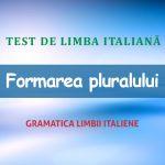 Test de limba italiană: formarea pluralului.