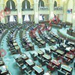 Senatul României respinge în mod vehement procedura de urgență pentru proiectele de lege privind grațierea.